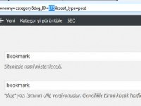 WordPress Kategori ID Bulma